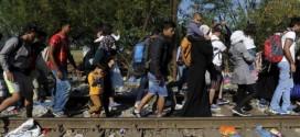 Quelles sont les communes qui accueillent les migrants en Languedoc-Roussillon ?