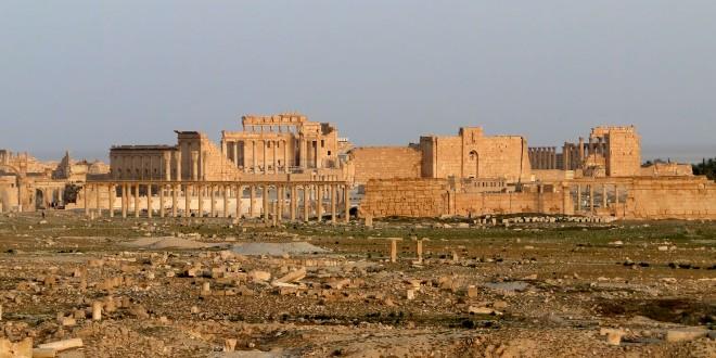Palmyre Lengadoc Info