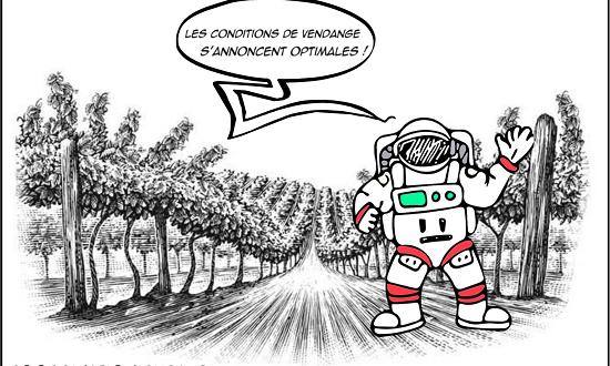 Bientôt des vendanges « en tenue de cosmonaute » selon la Coordination Rurale