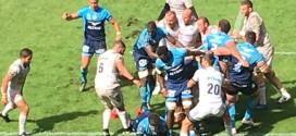 Rugby : le MHR renoue avec une large victoire à domicile !