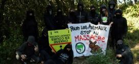 Gard. Un groupe antifa s'auto-dissout après un article de Lengadoc Info?